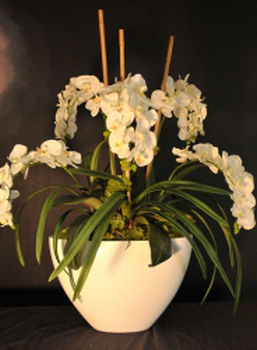Silks flower city florist come and discover the silk trees and floral arrangements available in our showroomwe have a large selection of silk trees topiaries orchids mightylinksfo